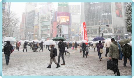 2016年11月24日関東大雪の交通機関最新情報!電車運行状況